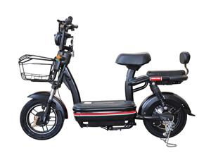 Two Wheel City Road Adult Used Electric Motorcycle