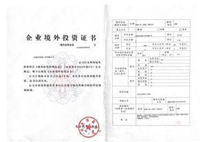 Enterprise Overseas Investment Certificate