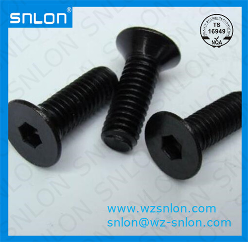 Din7991 Hexagon Socket Csk Head Machine Screw