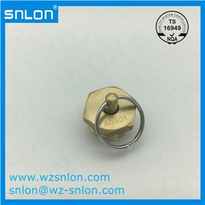 Brass Hexagon Screw Plug
