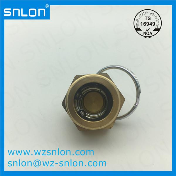 Brass Hexagon Screw Plug Manufacturers, Brass Hexagon Screw Plug Factory, Supply Brass Hexagon Screw Plug