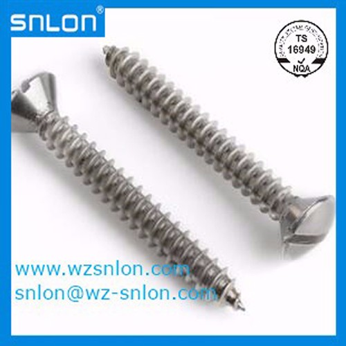 Din7973 Slotted Raised Oval Head Tapping Screw