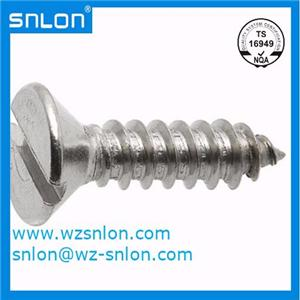 Din7972 Slotted Countersunk Head Tapping Screw