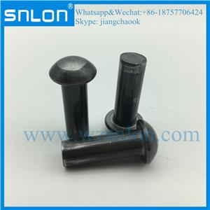 Black oxide Round Head Solid Rivet for Truck