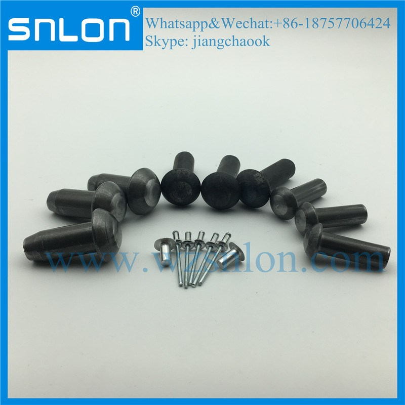 Various Type Round Head Rivet with High Quality