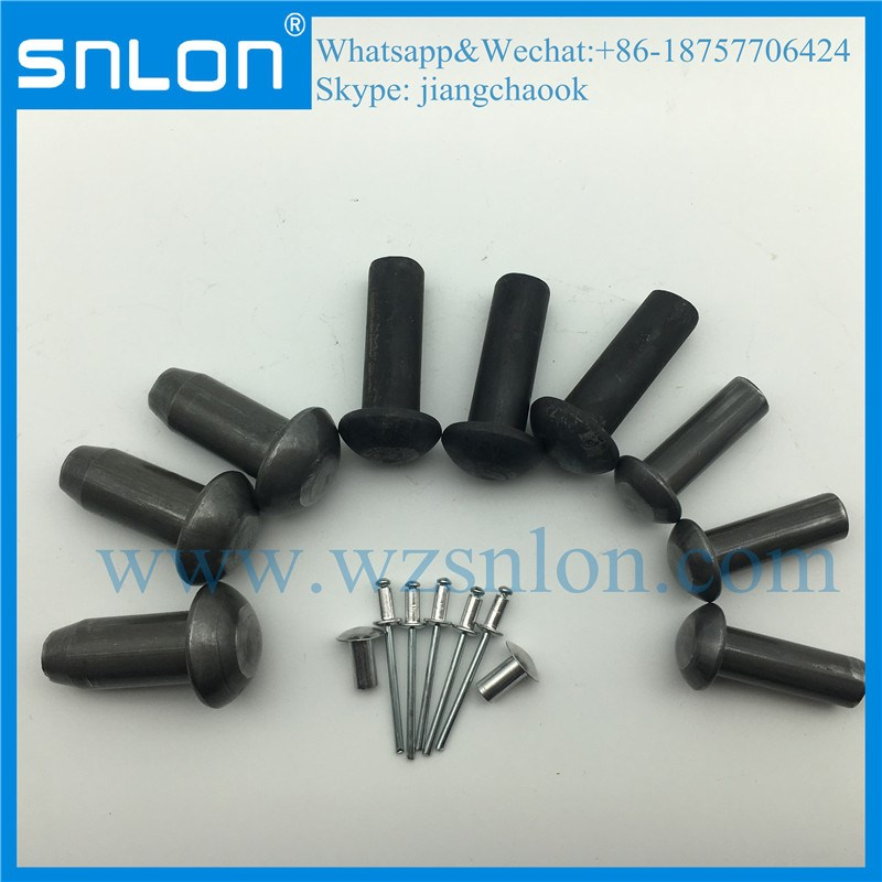 Large Round Head Rivet with High Quality