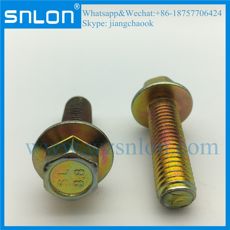 Chrome Coating Hex Head Flange Screw