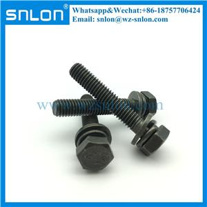 Chrome Coating Hex Head Screw with flat washer and spring washer