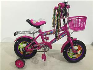 feshion children's bicycle