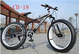 mountain bicycle sales