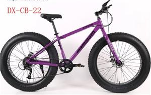 mountain bike sale