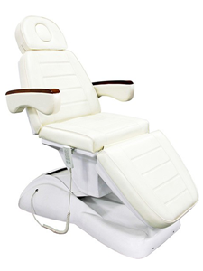 Electric Beauty Chair