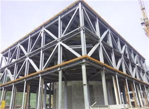 Large Span Steel Space Frame Workshop