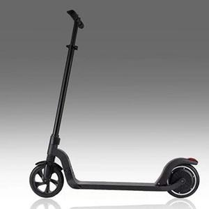 FUNNY WALK S5 Cruise Control Electric Scooter