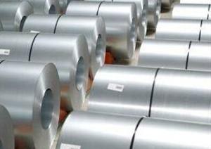 स्टील संरचना के लिए चरम विरोधी जंग जस्ता एल्यूमीनियम मैग्नीशियम मिश्र धातु इस्पात का तार Zn-Al-Mg