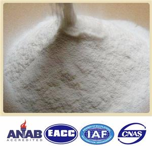Microencapsulation Lecithin powder
