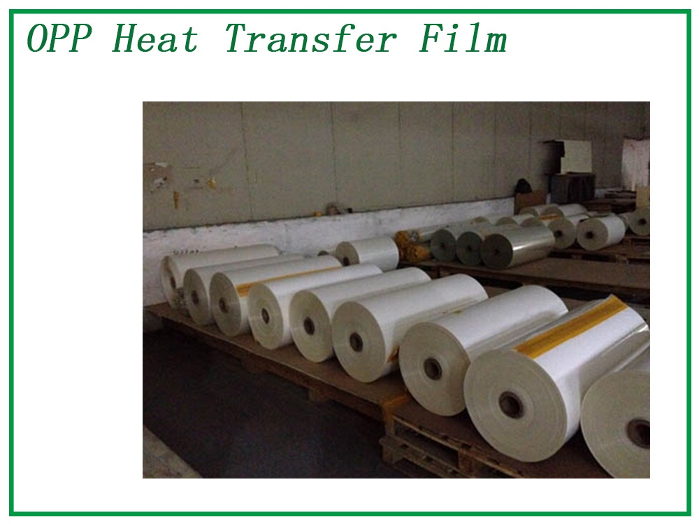 Single Coating Polyster Sheet Manufacturers, Single Coating Polyster Sheet Factory, Supply Single Coating Polyster Sheet