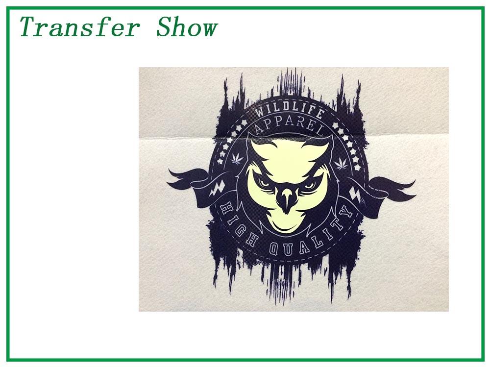 transfer show 3.jpg
