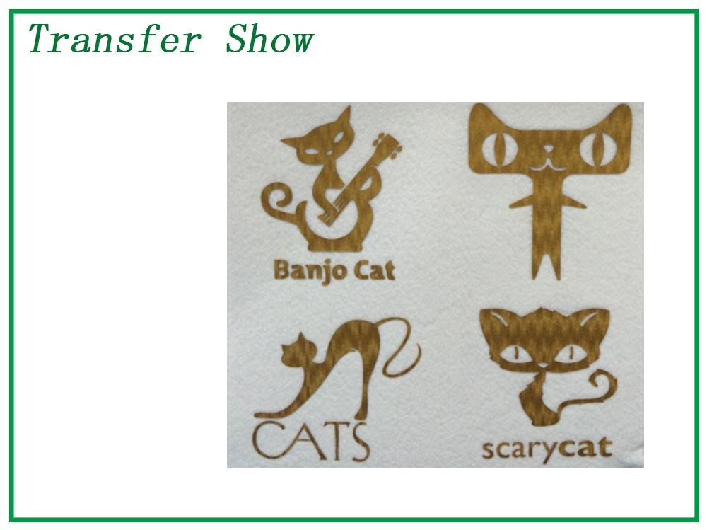 transfer show 6.jpg