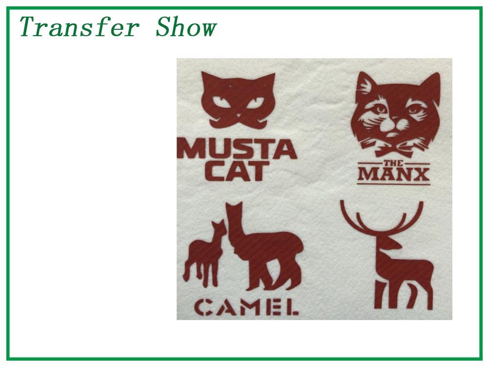 transfer show 7.jpg
