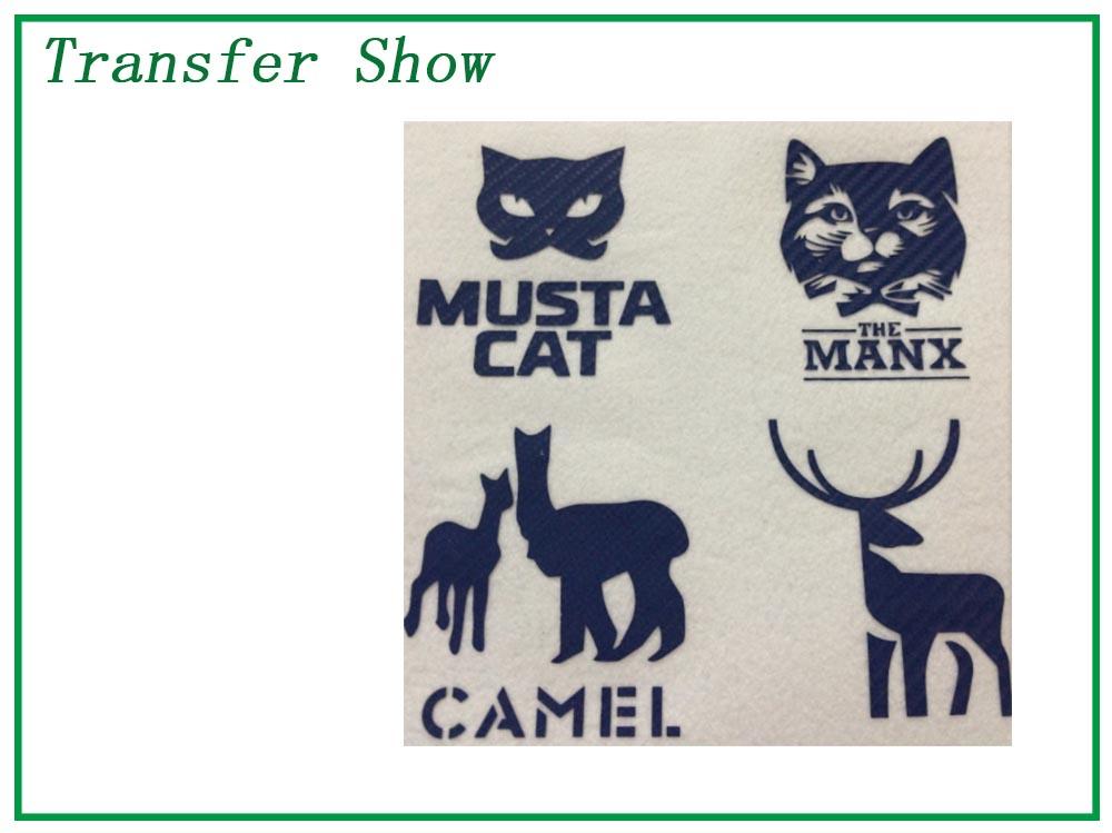 transfer show 5.jpg