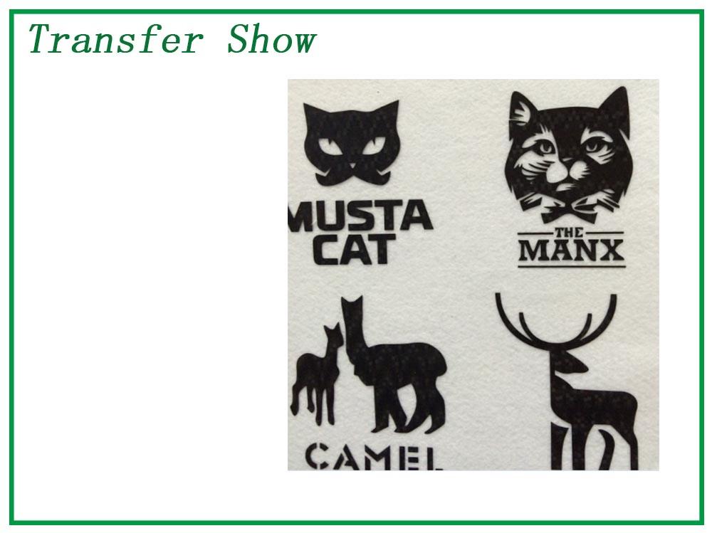 transfer show 8.jpg