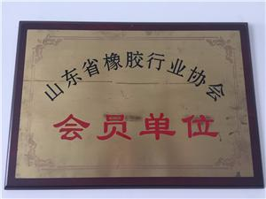 China Rubber Industry Association Member