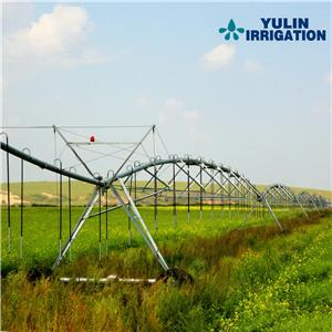 Irrigation System for grass with free design
