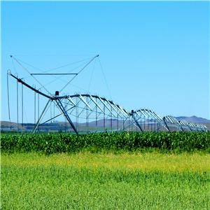 Linear Move Irrigation Machine Promotions