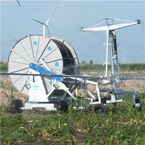 Hose Reel Irrigation System Wholesale from China