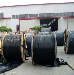 Suppliers Burly 10 core cable Company