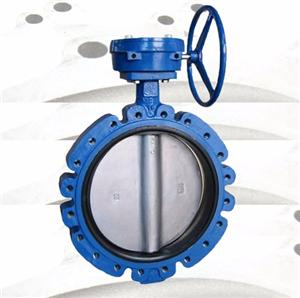Butterfly valve housing, valve body, valve casing