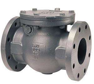 Ductile Iron Casting Check Valve Body