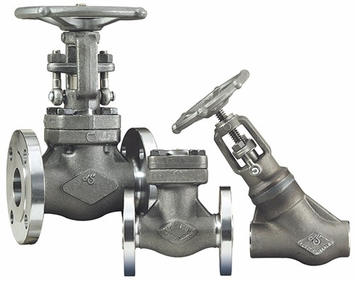 Forged Carbon, Stainless and Alloy Valves