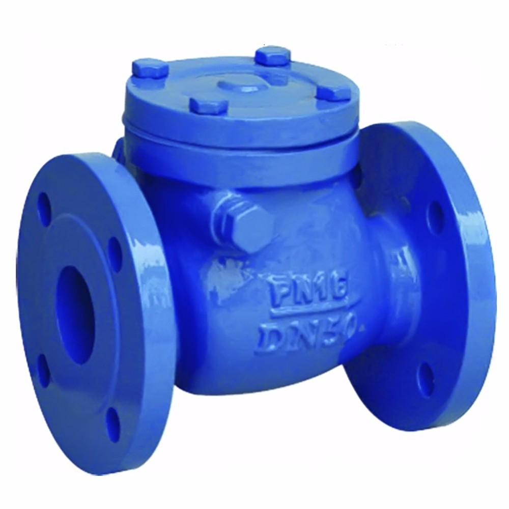 Foundry key product - cast iron check valve body