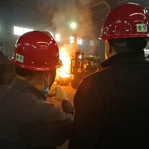 Canadian customer visited our foundry