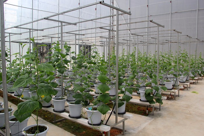 2000 Square Base In Shenzhen