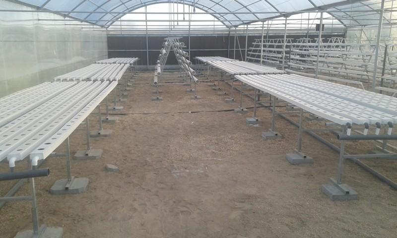 Presentation for NFT hydroponics system