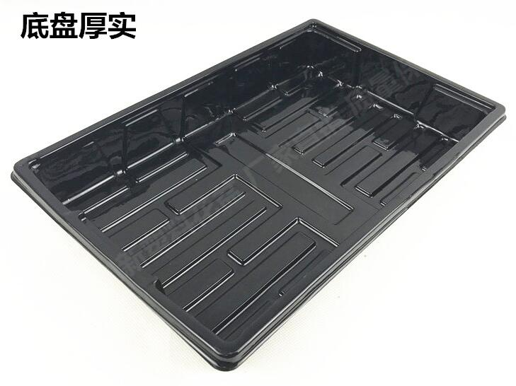 trays with domes