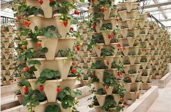 Gardening Plastic Tower pot