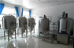 Brewhouse Boil Kettle