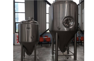 Stainless Steel Beer Equipment