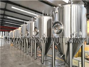 Tonsen Industrial Large Brewery Beer Brewing Equipment Fermentation Tank