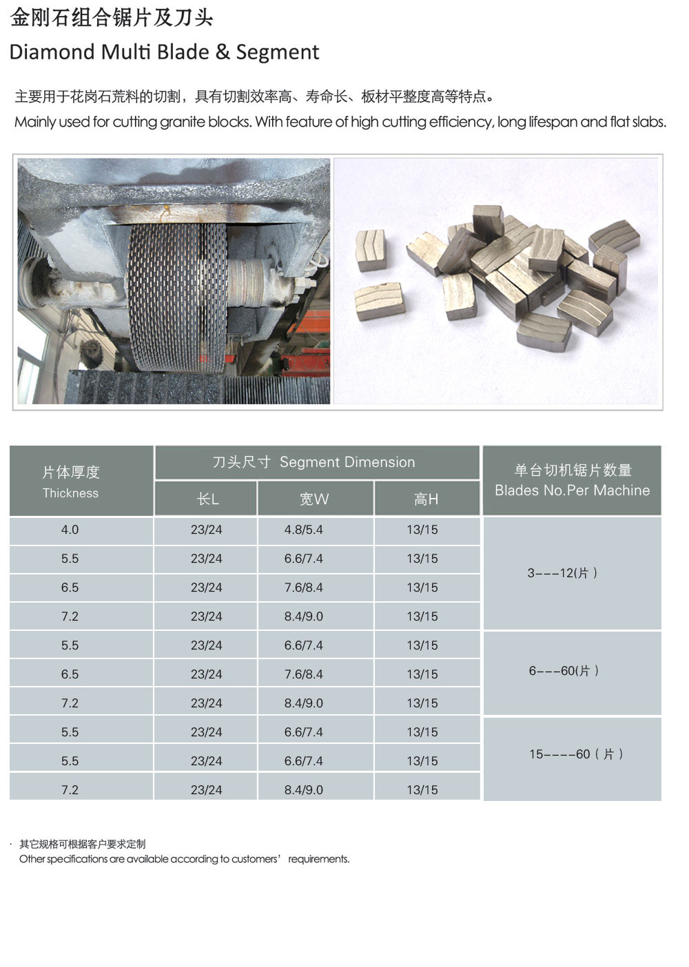 Diamond Multi Blade & Segment