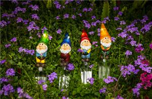 Cartoon gnomes solar lights