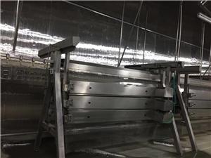 halal chicken slaughter machine