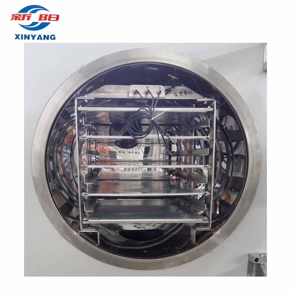 China High quality Pilot Freeze Dryer with 10kg Capacity