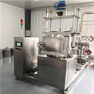 Lab scale vacuum fryer for snacks VF10TS