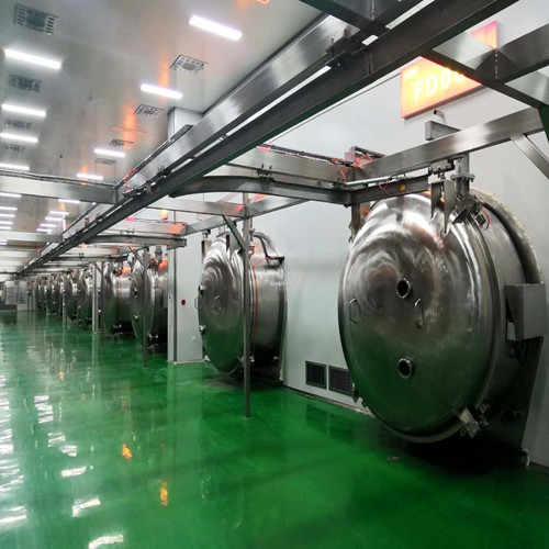 Middle Freeze Dryer with 900kg Capacity Manufacturers, Middle Freeze Dryer with 900kg Capacity Factory, Supply Middle Freeze Dryer with 900kg Capacity