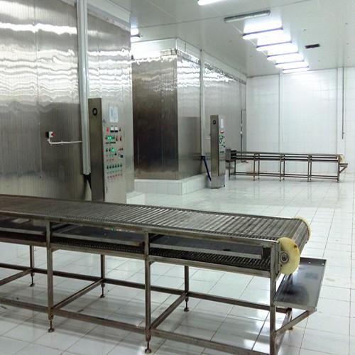 Mesh Belt Tunnel Freezer Manufacturers, Mesh Belt Tunnel Freezer Factory, Supply Mesh Belt Tunnel Freezer